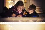 Museum of Zoology, Twilight 2012