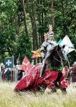 Knight on horseback © Donimic Sewell