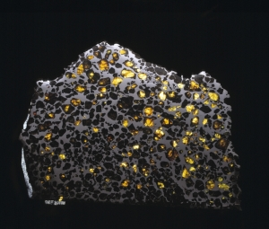 Esquel Meteorite. This meteorite consists of gem-quality olivine embedded within an Fe-Ni matrix. © The Trustees of the Natural History Museum, London
