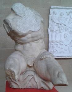 The Belvedere Torso