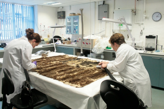 Charlotte Owen and I removing frass, debris, and fur from a cloak