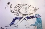 Ibis by Jo-Jo's, year 9, The Leys School, pen and ink drawing