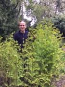 Paul with the Royal fern Osmunda regalis