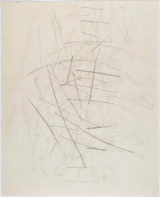 Lines that could be scars (no. 9), 2015, Tom Nicholson.  Black and white drypoint print