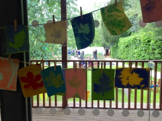 Washing lines of plant prints